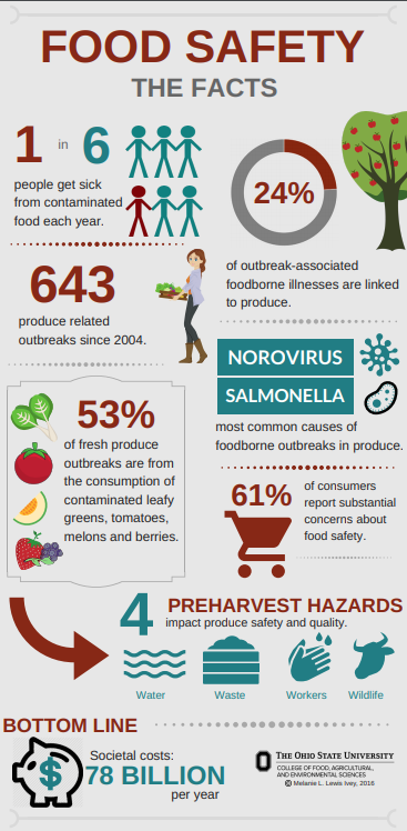 Fresh produce safety infographic describing general facts about food safety