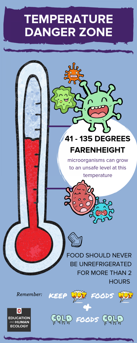 Temperature Danger Zone Infographic