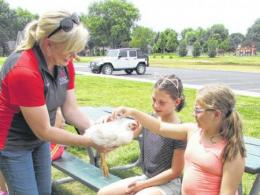 Beth Scheckelhoff showing two students a chicken
